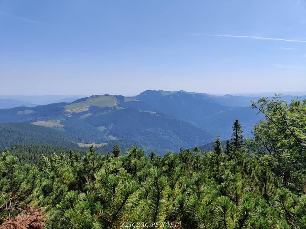 Vârful Giumalău 1858 metri - Blog de calatorii - ZIGZAG PE HARTĂ - IMG 20200806 112929