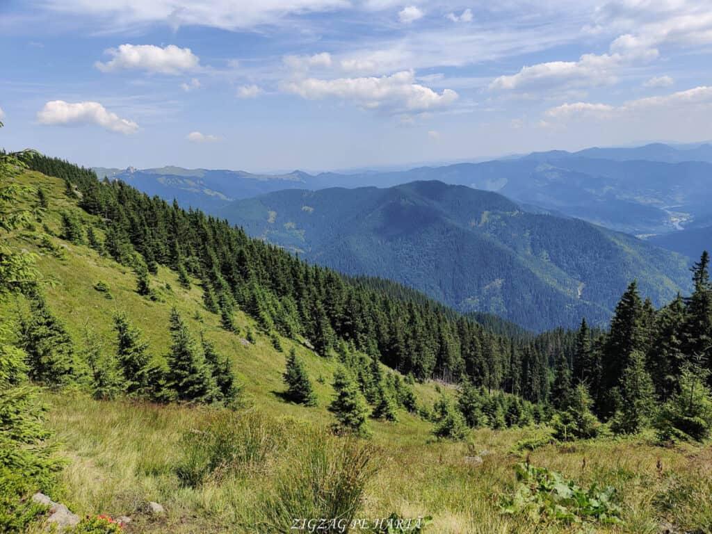 Vârful Giumalău 1858 metri - Blog de calatorii - ZIGZAG PE HARTĂ - IMG 20200806 135330