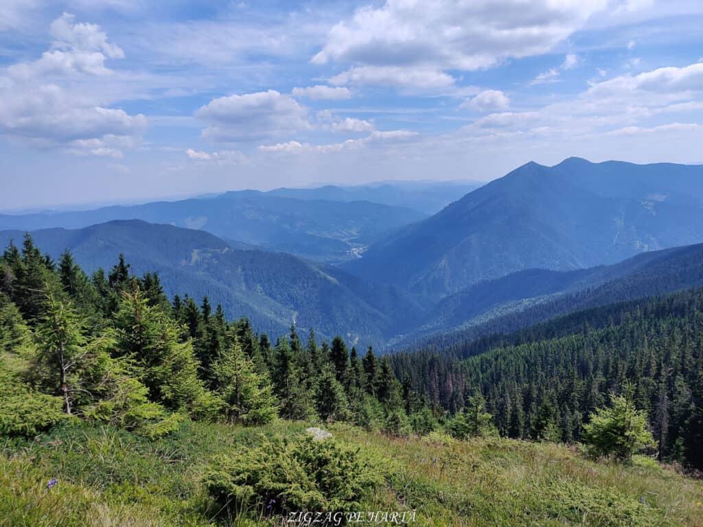 Vârful Giumalău 1858 metri - Blog de calatorii - ZIGZAG PE HARTĂ - IMG 20200806 135807