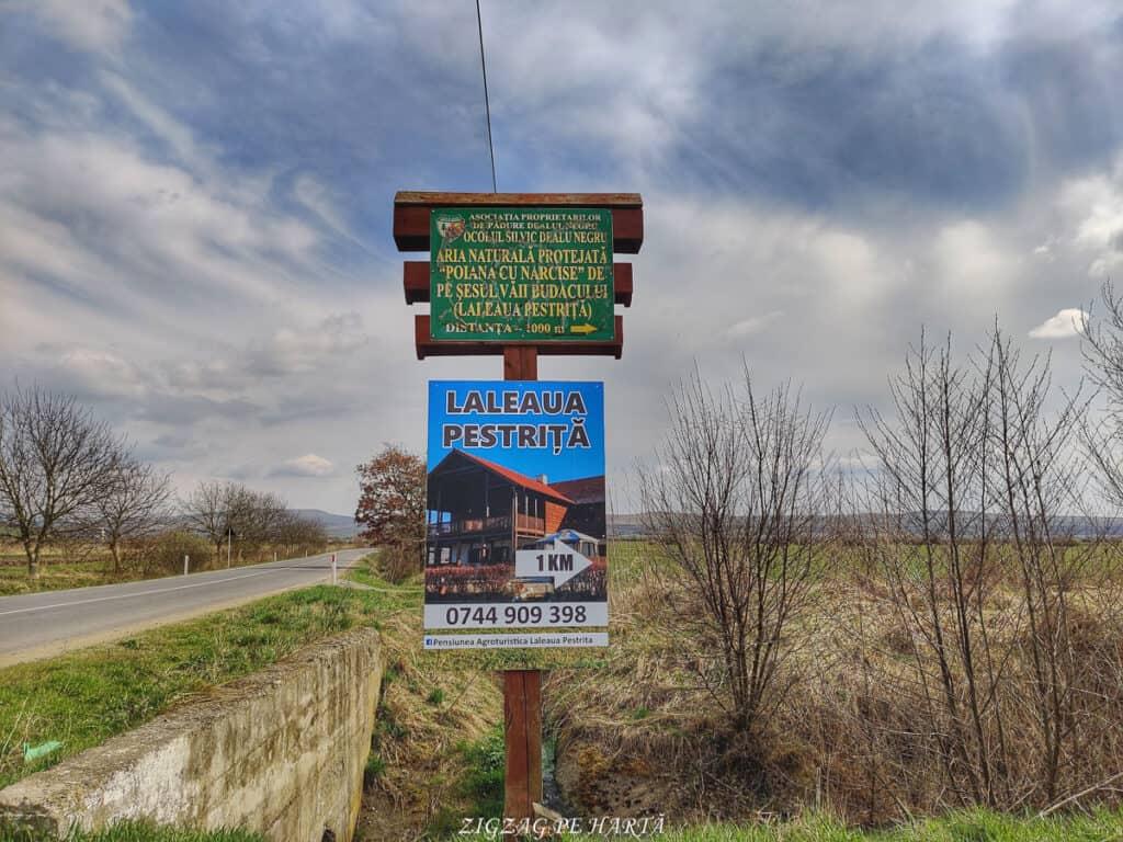 Laleaua pestriță din Orheiul Bistriței - Blog de calatorii - ZIGZAG PE HARTĂ - IMG 20210417 155010 01
