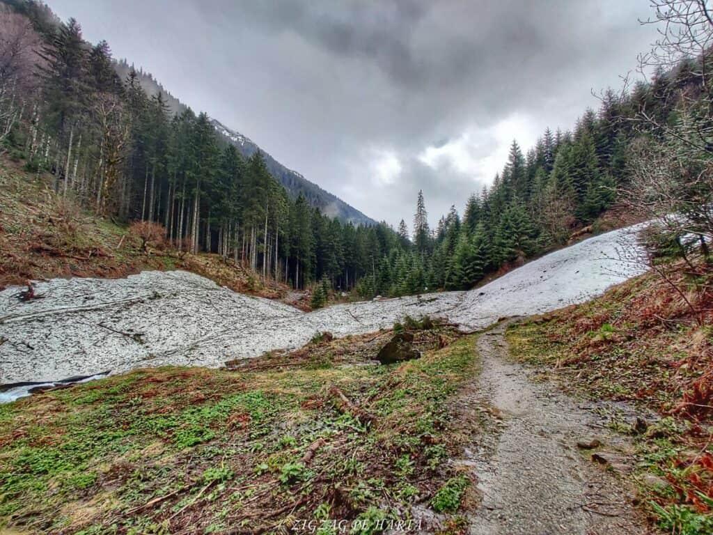 Traseul spre Cabana Valea Sâmbetei din Făgăraș - Blog de calatorii - ZIGZAG PE HARTĂ - IMG 20210508 105654 01