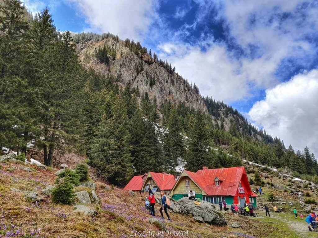 Traseul spre Cabana Valea Sâmbetei din Făgăraș - Blog de calatorii - ZIGZAG PE HARTĂ - IMG 20210508 131346 01