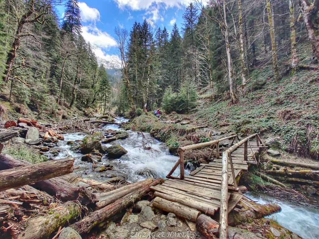 Traseul spre Cabana Valea Sâmbetei din Făgăraș - Blog de calatorii - ZIGZAG PE HARTĂ - IMG 20210508 142020 01