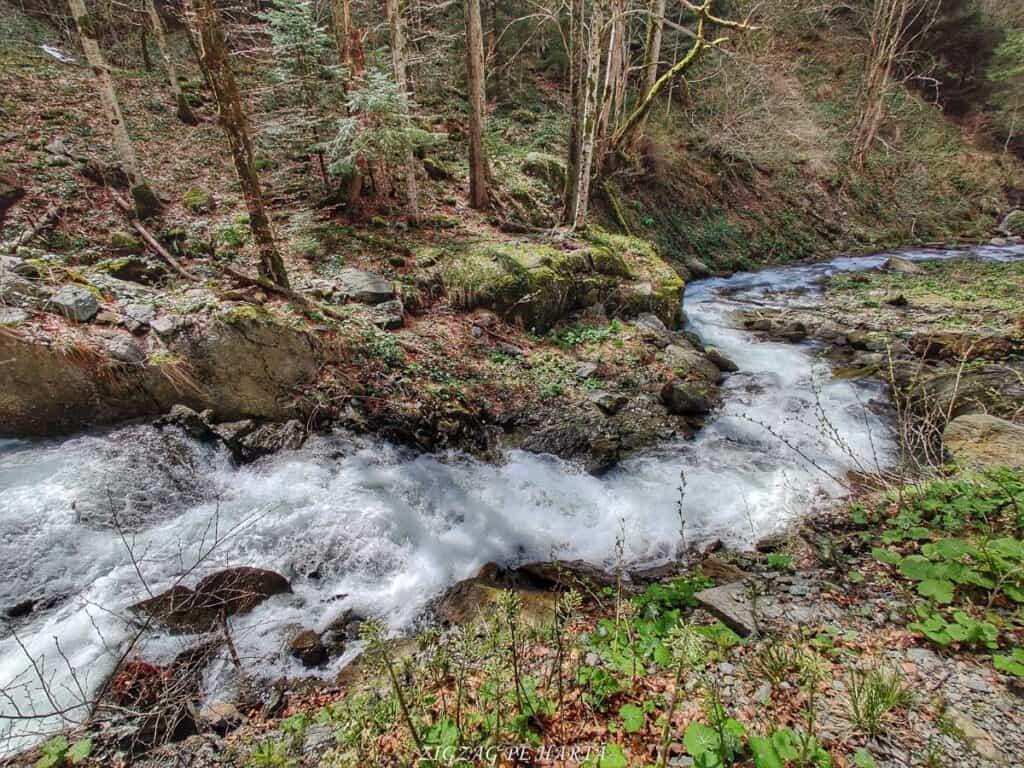 Traseul spre Cabana Valea Sâmbetei din Făgăraș - Blog de calatorii - ZIGZAG PE HARTĂ - IMG 20210508 144251 01