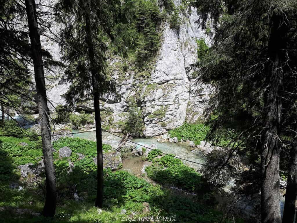 Peștera Ialomiței, un obiectiv turistic spectaculos - Blog de calatorii - ZIGZAG PE HARTĂ - 20190615 141517
