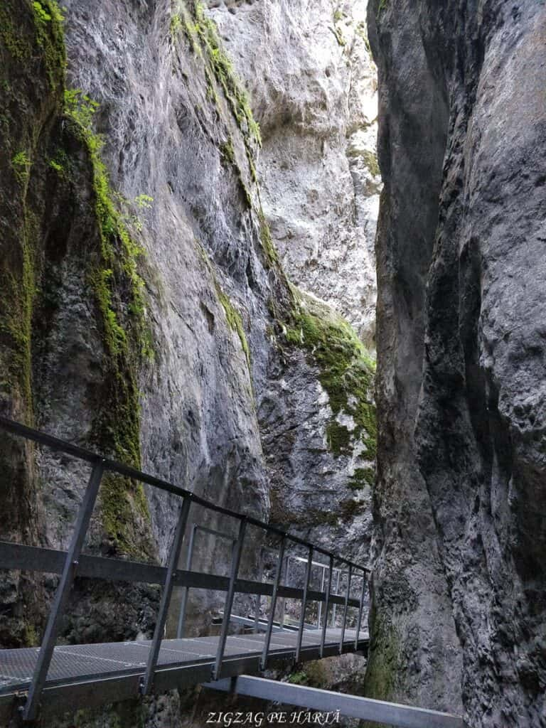 Canionul 7 Scări din Munții Piatra Mare - Blog de calatorii - ZIGZAG PE HARTĂ - IMG 20180922 110104