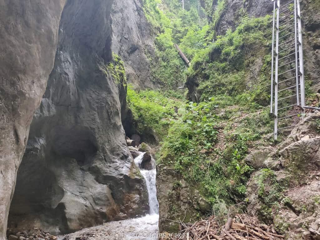 Canionul 7 Scări din Munții Piatra Mare - Blog de calatorii - ZIGZAG PE HARTĂ - IMG 20190617 122737
