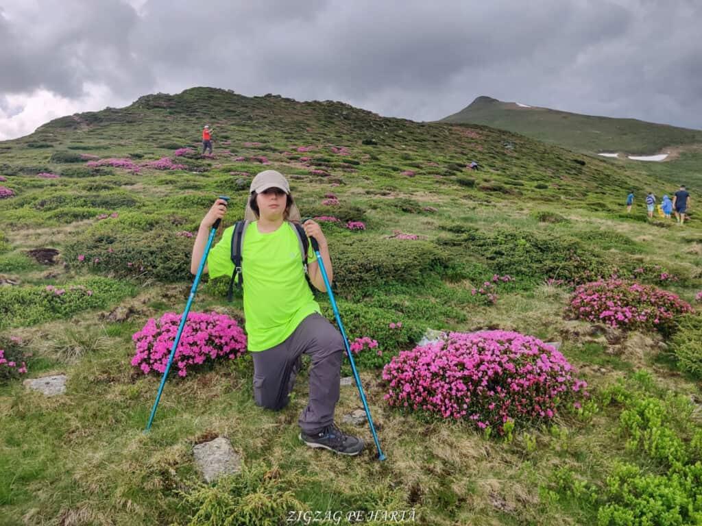 Rododendroni în Munții Rodnei - Blog de calatorii - ZIGZAG PE HARTĂ - IMG 20210703 WA0019 01 1