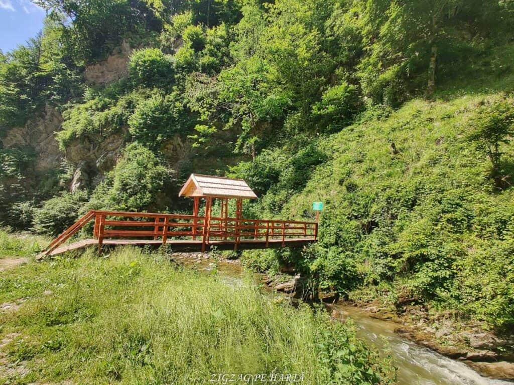Cascada Cheilor din Valea Cormaia - Blog de calatorii - ZIGZAG PE HARTĂ - IMG 20210627 111038 01