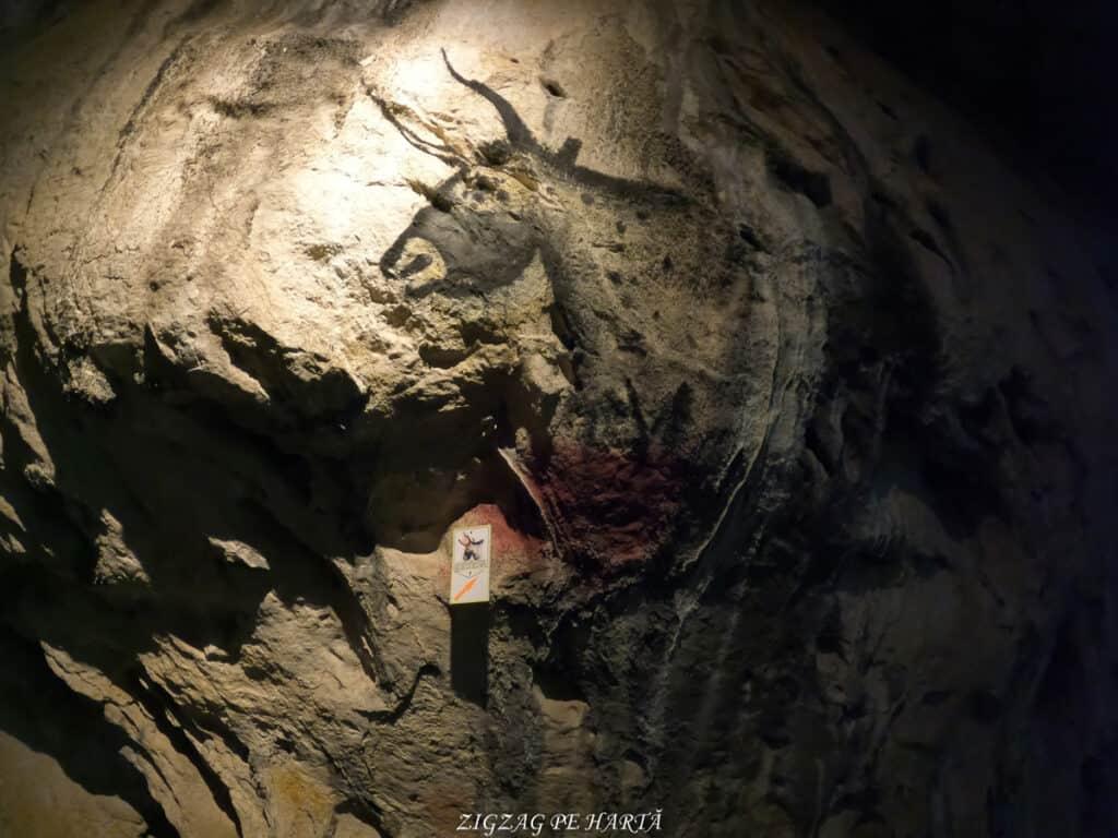 Peștera Bolii - Blog de calatorii - ZIGZAG PE HARTĂ - GOPR1034