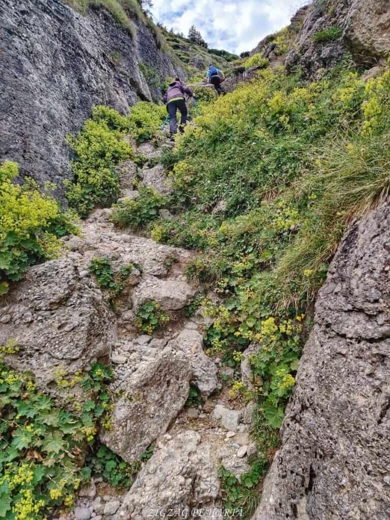 Vârful Ciucaș, 1954 metri - Blog de calatorii - ZIGZAG PE HARTĂ - IMG 20210818 141102 01 1