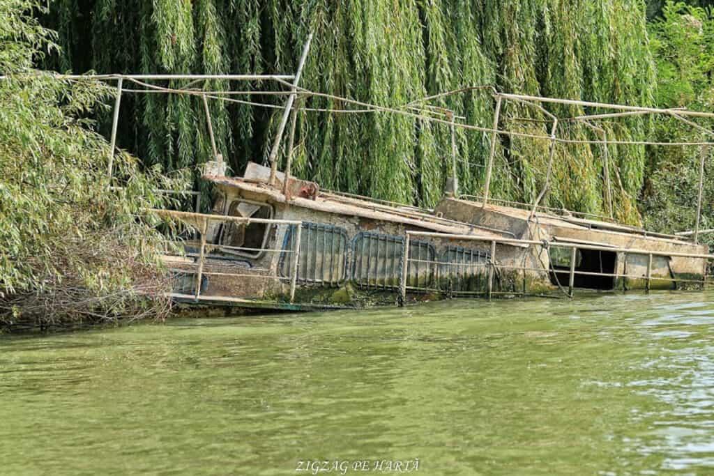 Delta Dunării – plimbare cu barca pe Brațul Sfântul Gheorghe - Blog de calatorii - ZIGZAG PE HARTĂ - IMG 3836