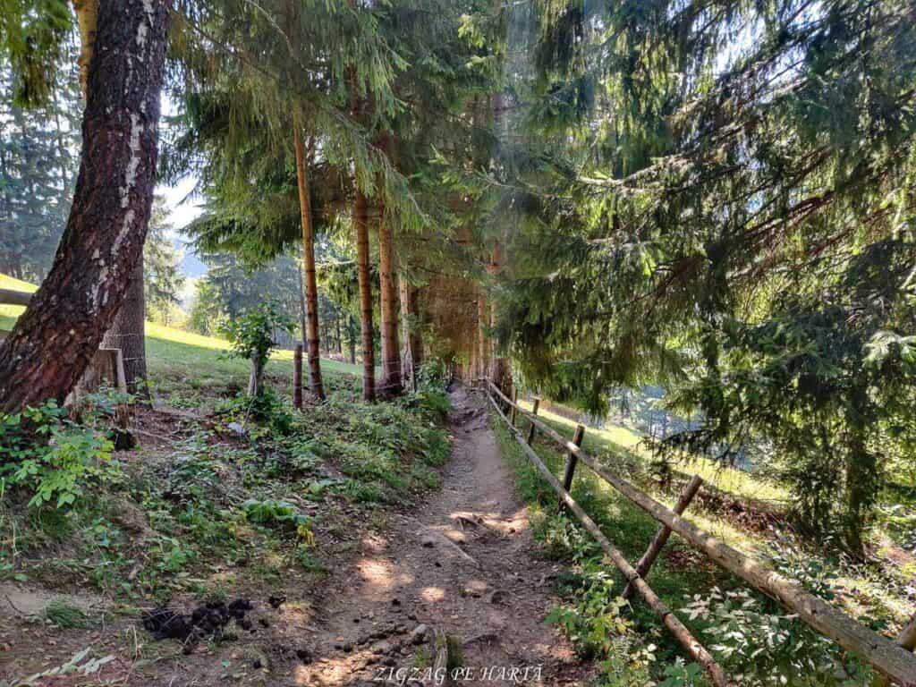 Amfiteatrul Transilvania - T9 - Blog de calatorii - ZIGZAG PE HARTĂ - IMG 20210911 153104 01